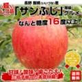 apple45_1r2.jpg