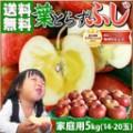 sm_gd_fuji_farm5k17.jpg