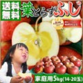 sm_gd_fuji_farm5k21.jpg