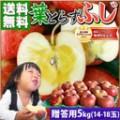 sm_gd_fuji_prem5k.jpg